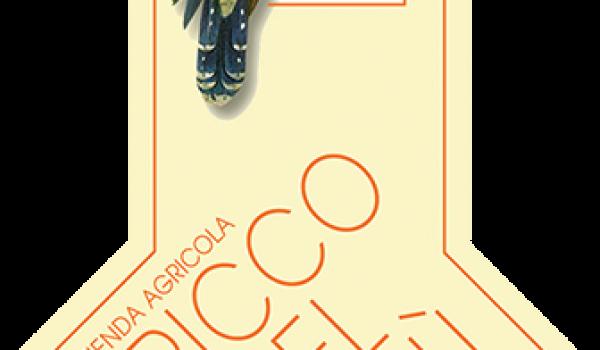 Dogliani DOCG 2017